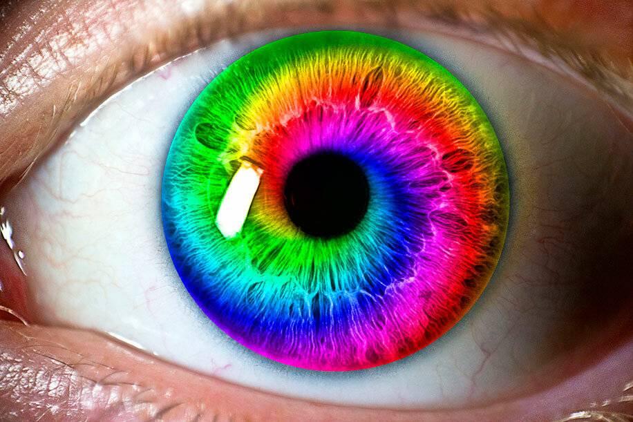 Цвет глаз у человека – почему у людей разный цвет глаз