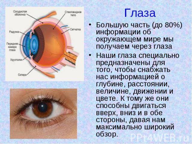"""Презентация на тему: """"90% всей информации люди получают через глаза в древности глазам приписывали всевозможные мистические свойства. глаза часто символизировали смысл и суть."""". скачать бесплатно и без регистрации."""
