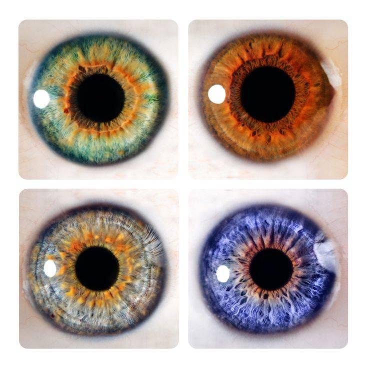 Линзы, увеличивающие глаза — обзор. описание, инструкции, отзывы