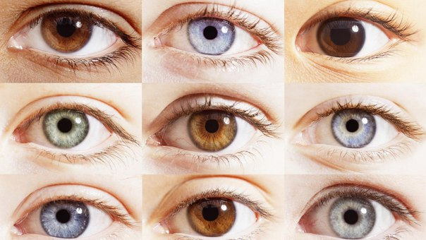 Значение цветов глаз. характер по глазам.