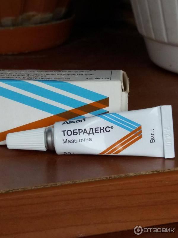 Тобрадекс мазь глазная - инструкция, цена, отзывы