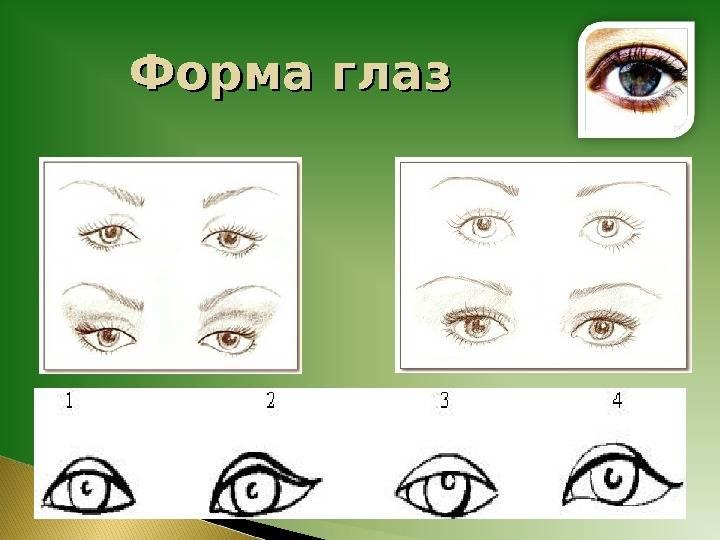 Как узнать характер в зависимости от типа глаз
