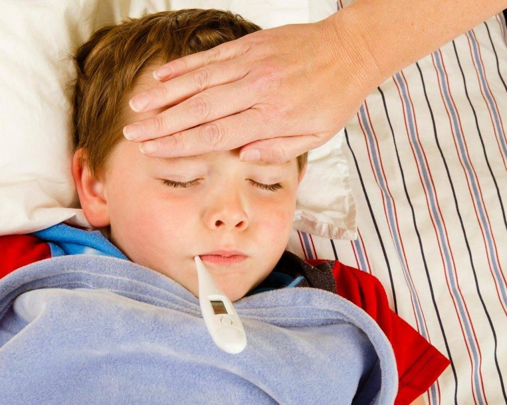 Что такое грипп? вирус гриппа. симптомы, признаки и осложнения заболевания. фото