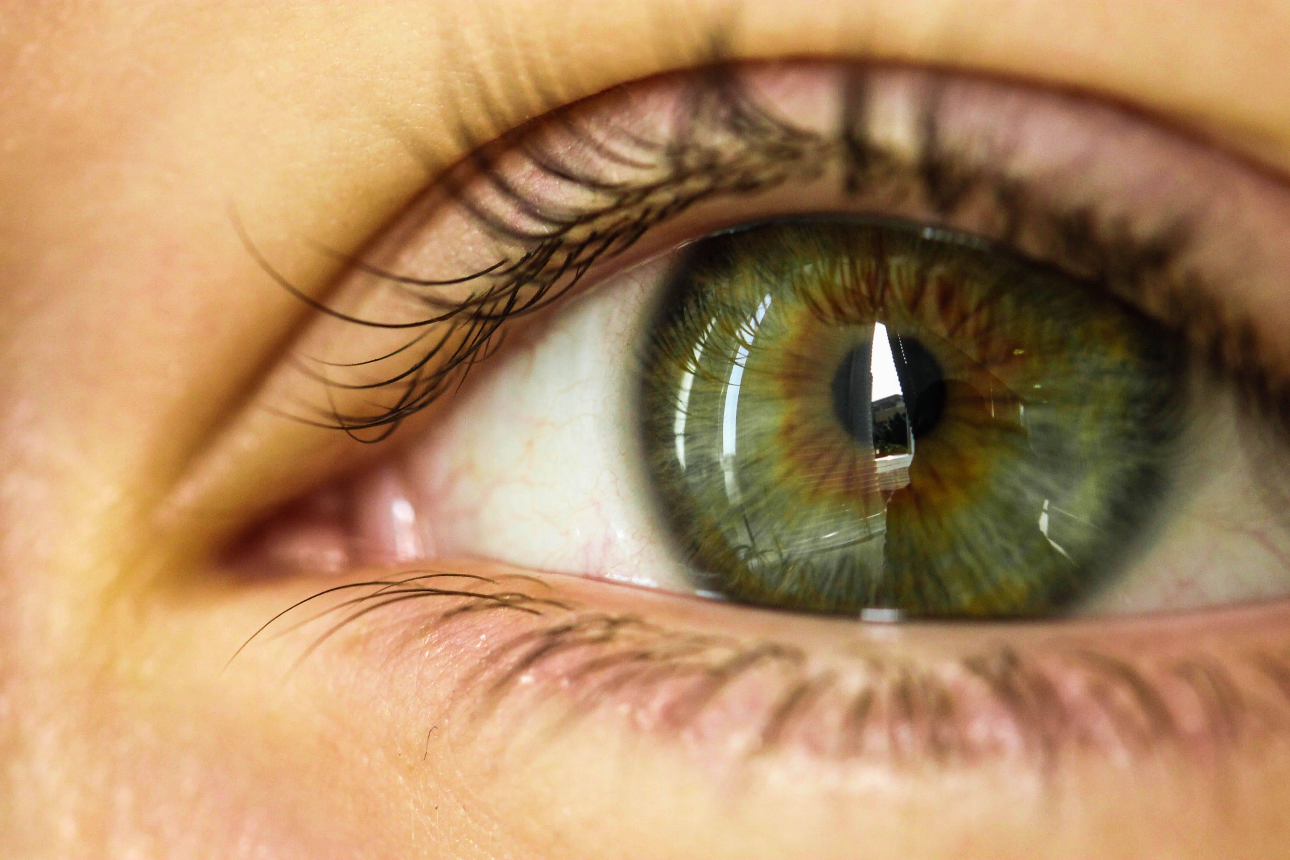 Зеленые глаза: характеристики женщин и мужчин