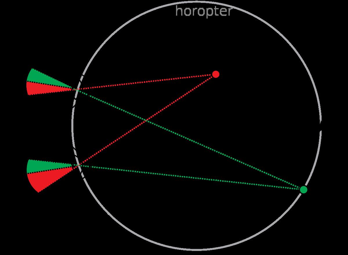 Бинокулярное зрение: что это такое и как его проверить