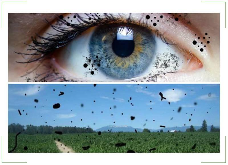 Перед глазами плавают черные точки: причины и лечение oculistic.ru перед глазами плавают черные точки: причины и лечение