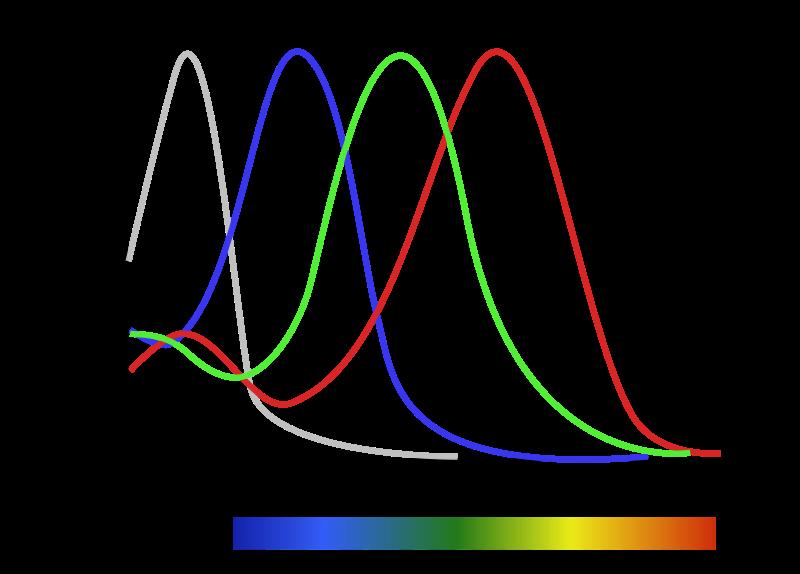 Тест ишихары на различие цветов и оттенков oculistic.ru тест ишихары на различие цветов и оттенков