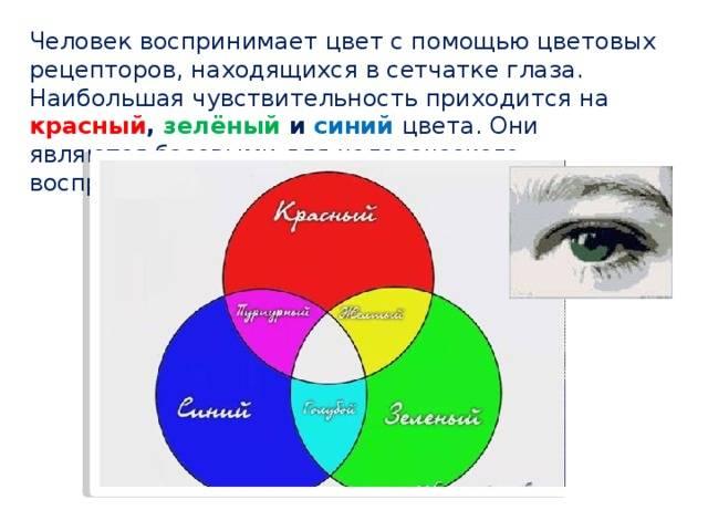 «запрещенные цвета»: какие оттенки не может различить глаз человека?