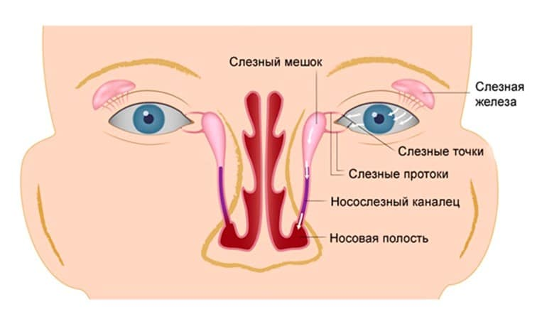 Зондирование слезного канала глаз: операция новорожденным