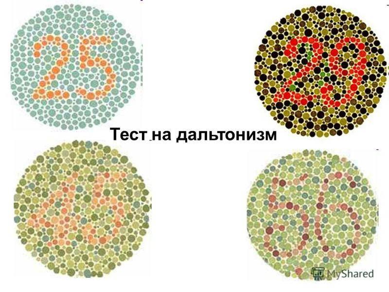 Какие цвета видят и не видят дальтоники