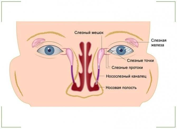Массаж носослезного канала новорожденного – эффективная тактика лечения дакриоцистита
