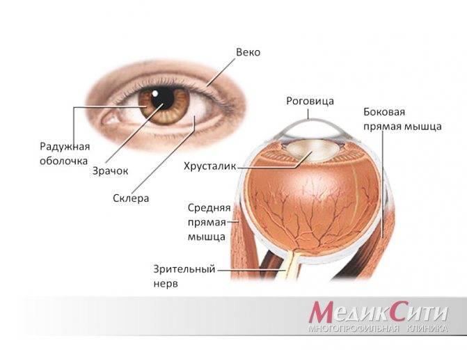 Что делать если болят глаза и красные сосуды