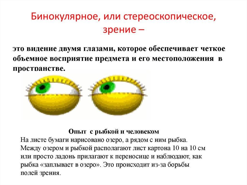 Невероятные стереокартинки для улучшения зрения
