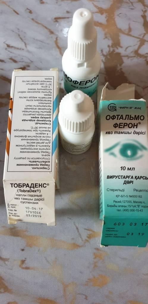 Дешевые аналоги офтальмоферона: топ 7 глазных капель для детей и взрослых