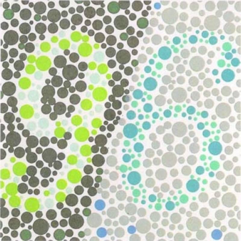 Таблицы рабкина для исследования зрения на цветовосприятие - тест на дальтонизм с большими картинками и с ответами онлайн