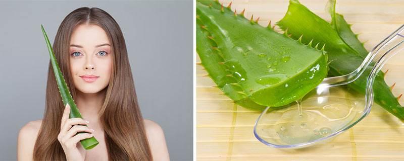 Можно ли протирать лицо листом алоэ или наносить сок растения, допустимо ли мазать кожу каждый день и как это делать, применение аптечных средств