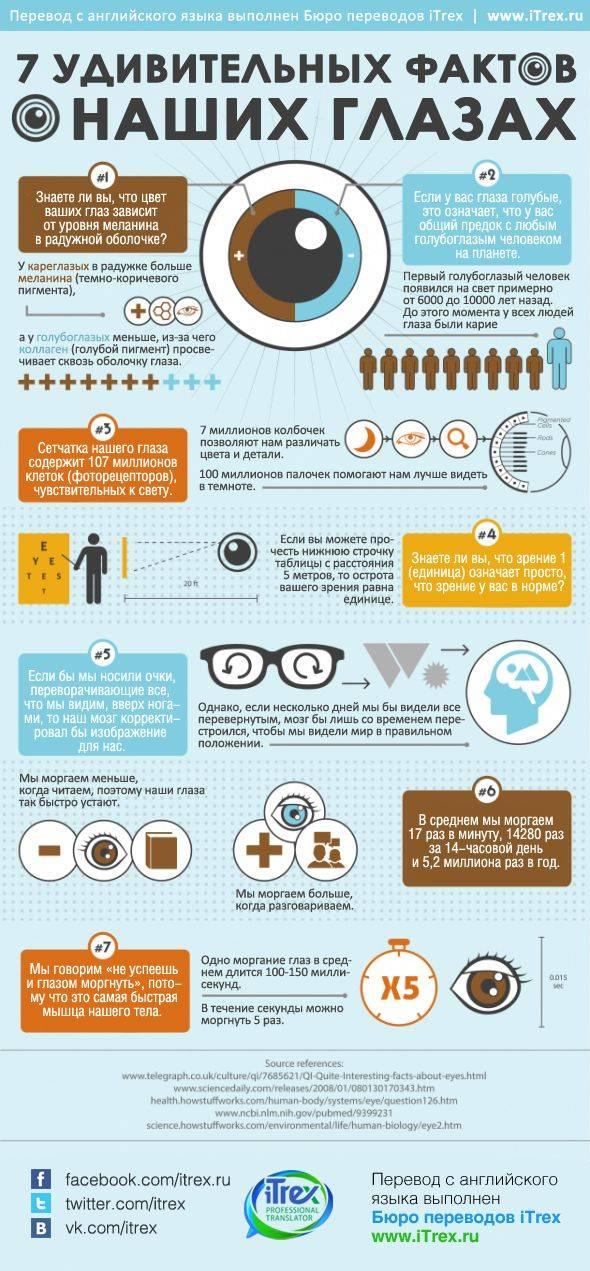 Очень интересные факты о глазах