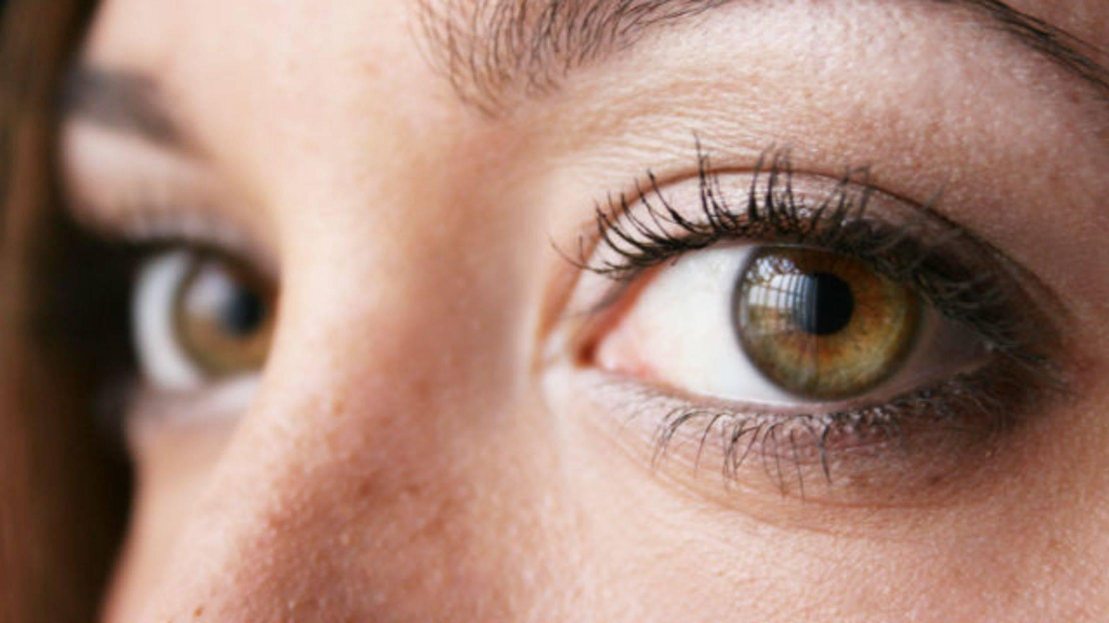 Ореховый цвет глаз: особенности, фото, макияж. ореховый цвет глаз характер. как определить характер по цвету глаз ореховый оттенок глаз