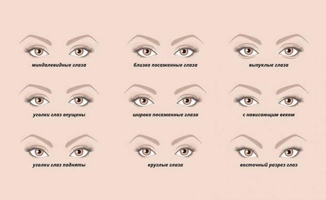 Разрезы глаз разных национальностей. дневной и вечерний макияж для миндалевидных глаз