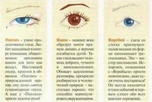 Люди с маленькими глазами очень внимательны к деталям. что расскажет о человеке форма его глаз