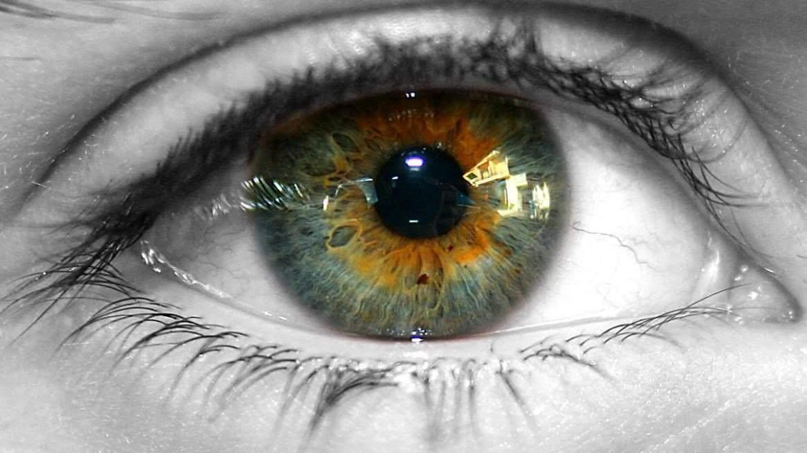 Люди с карими глазами более надежные, и другие факты о цвете глаз :: инфониак
