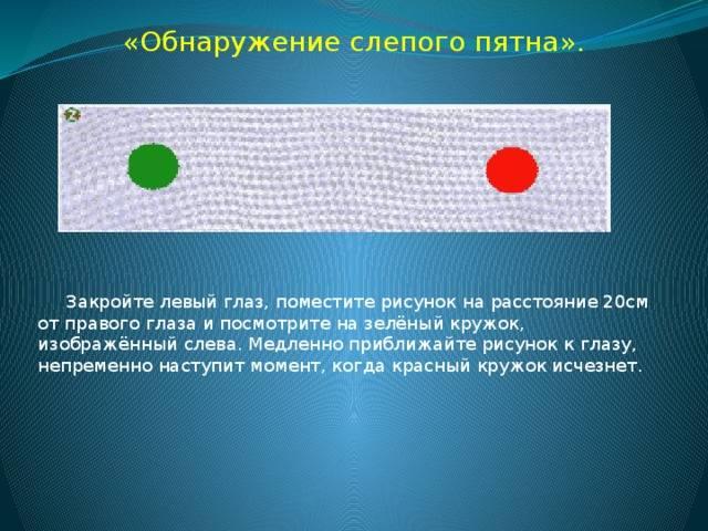 Слепое пятно глаза строение функции симптомы и лечение - медицинский справочник medana-st.ru