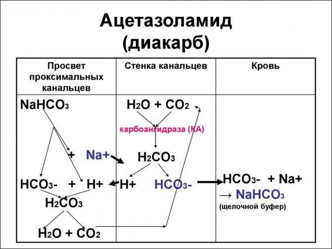 Ацетазоламид инструкция по применению цена и отзывы