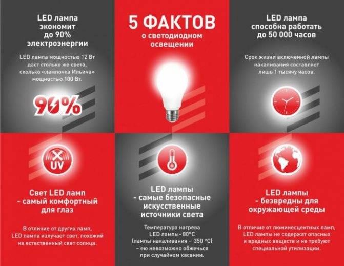 Опасны ли светодиодные led лампы для человека? правда и мифы