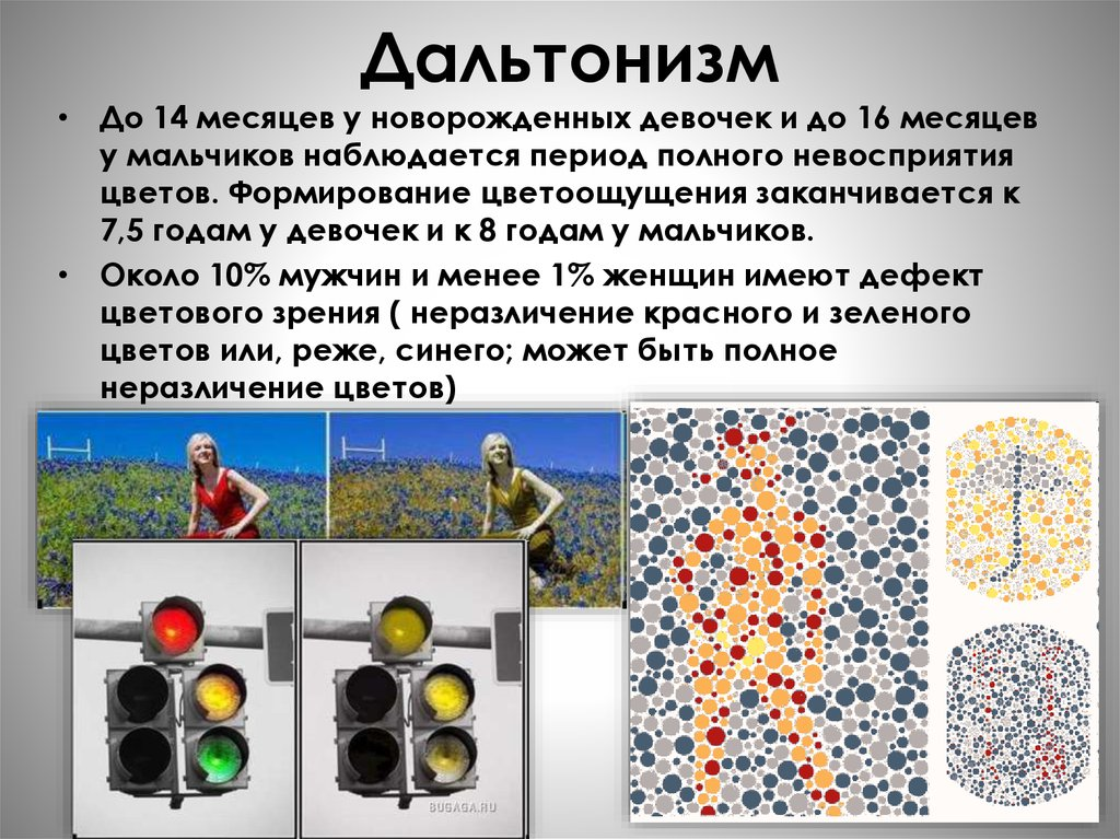 Как видят дальтоники, цвета которые они путают, лечение дальтонизма, окружающий мир