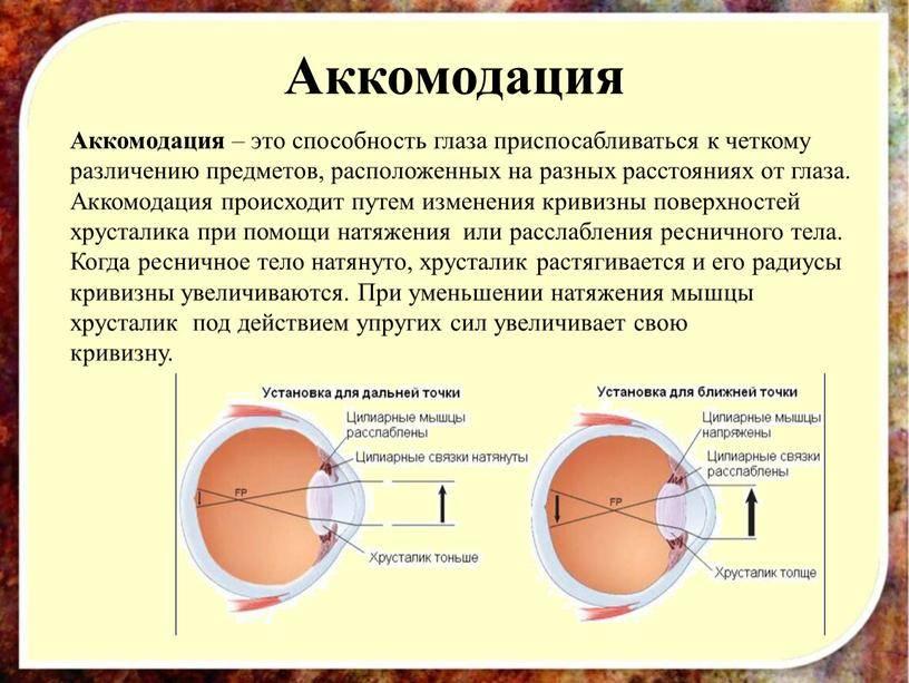 Нарушение аккомодации глаза - что это, лечение, причины и симптомы