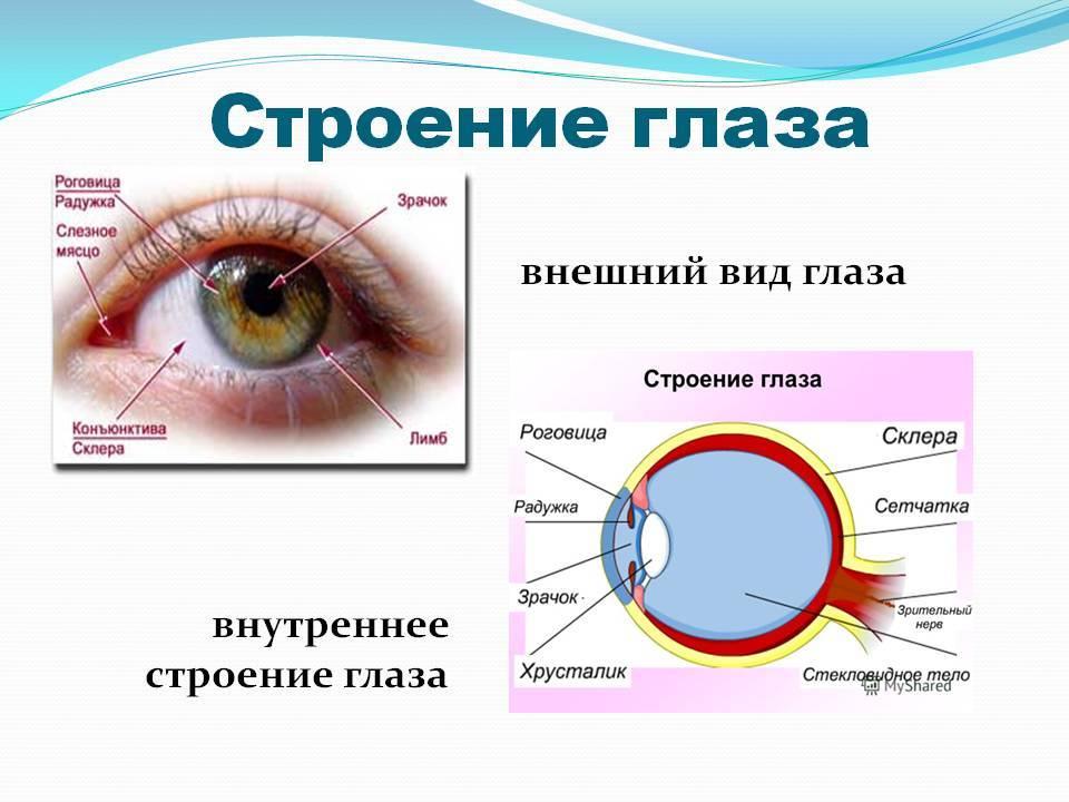 Белые глаза без зрачков — posmotre.li