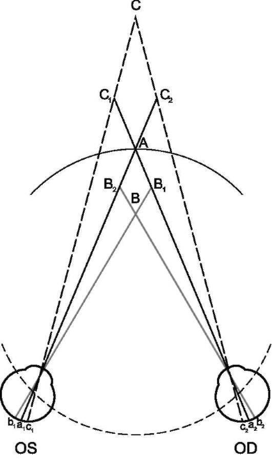 Бинокулярное (стереоскопическое) и монокулярное зрение: нарушения, как проверить