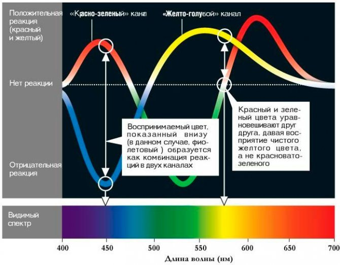 Чем вредны для здоровья светодиодные лампы