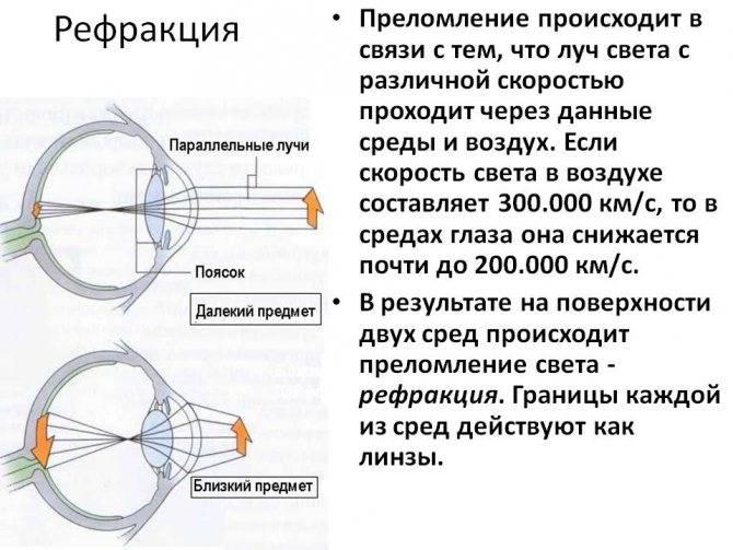 Что значит зрение минус 2: восстановление остроты глаз при близорукости