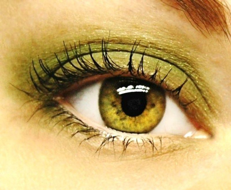 О чём говорит болотный цвет глаз у людей - медицинский справочник medana-st.ru