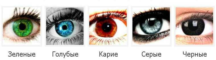 Характеристика зеленых глаз у женщин и мужчин: различные оттенки, характер и особенности людей