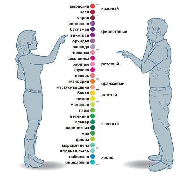 Биологические различия между полами - мужчина и женщина сайт «мы о здоровье»