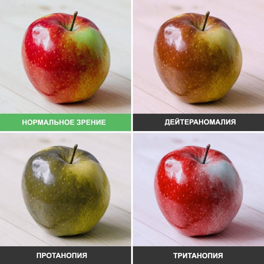 Почему человеческий глаз различает больше оттенков зеленого фарго. почему человеческий глаз различает больше оттенков зеленого | я - леди