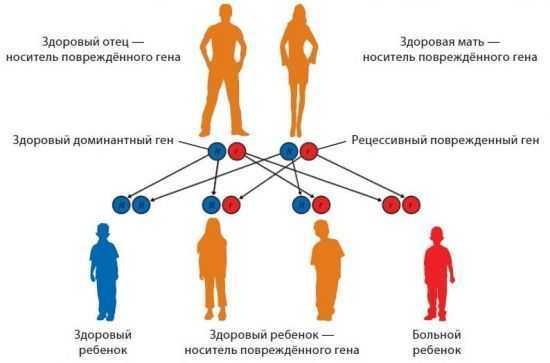 Передается ли псориаз по наследству от отца\матери к ребенку: наследственная теория передачи болезни