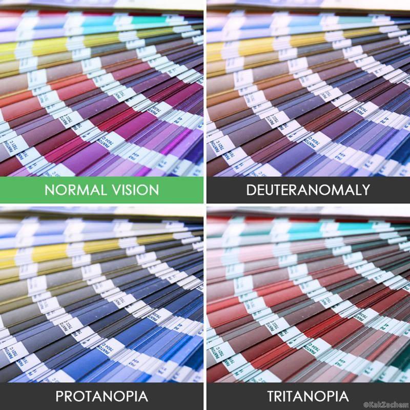 Какие цвета не различают дальтоники?