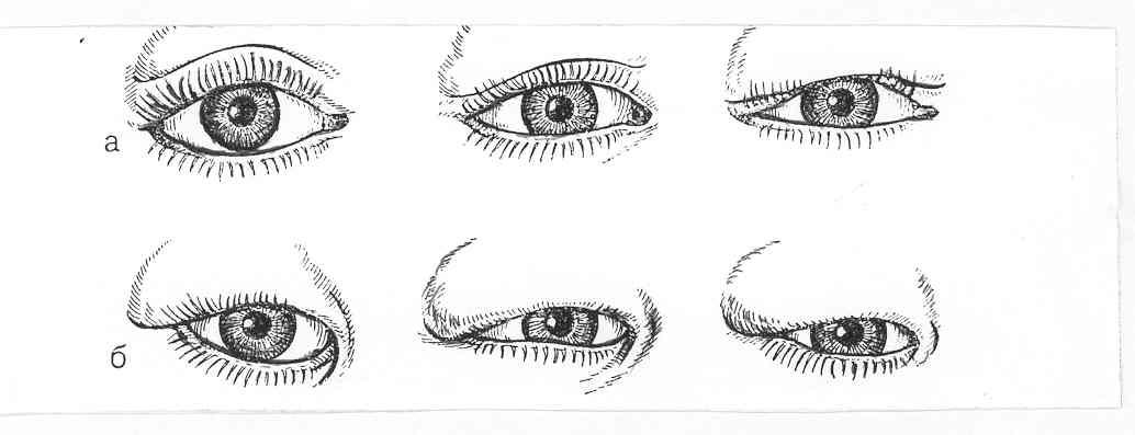 Форма глаз и характер человека - много фото