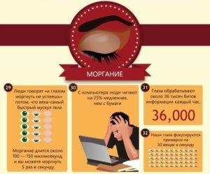 Топ самых редких цветов глаз. все факты о глазах - новая медицина
