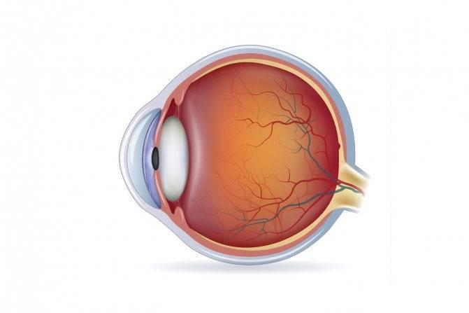 Гипертоническая ангиопатия сетчатки обоих глаз: причины, симптомы и лечение