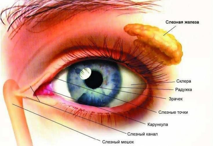 Болит правая сторона головы и глаз как лечить