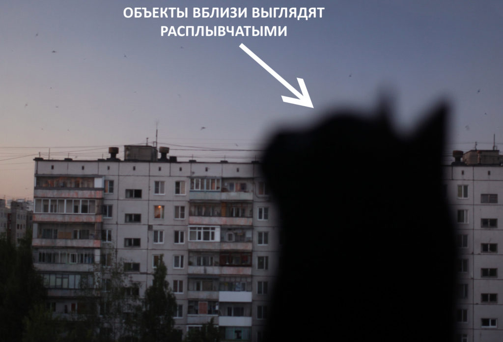 Как видит человек с дальнозоркостью фото