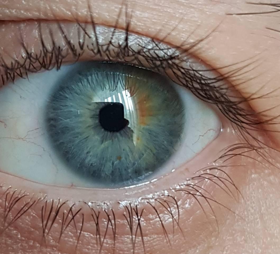 Значение цветов глаз у мужчин и женщин (зеленые, серые, голубые) значение цветов глаз у мужчин и женщин (зеленые, серые, голубые)