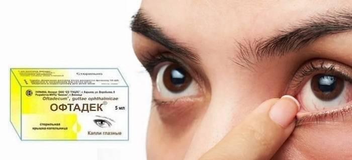 Офтадек глазные капли – инструкция, цена, отзывы и аналоги - здоровая жизнь