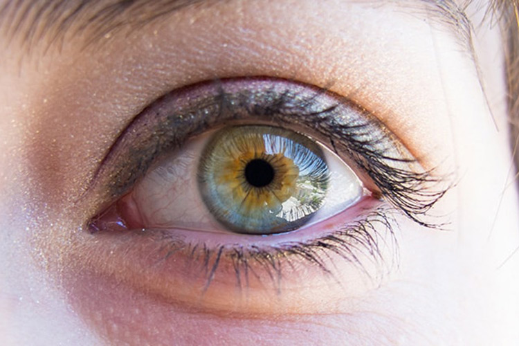 Цвет глаз родителей и цвет глаз ребенка. таблица, принципы и закономерности - sammedic.ru