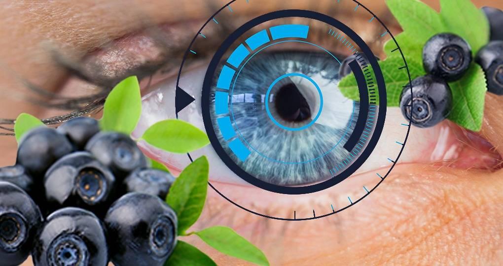 Помогает ли черника форте для улучшения зрения