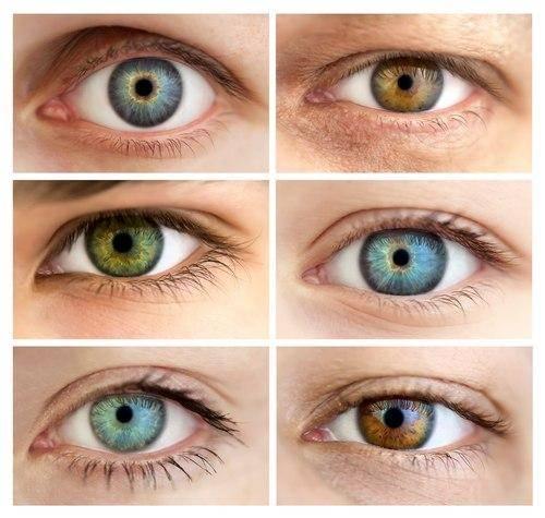 Глаза хамелеоны у человека: причины, признаки, значение, фото